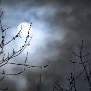 Eisiger Nebelmond im November! So können Sie DIESE heute Finsternis sehen (Foto)