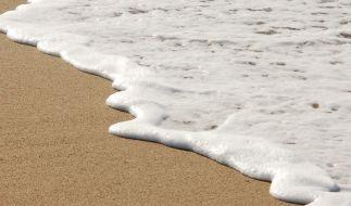 An den Strand von Kreta wurde eine bizarre Kreatur angespült. (Foto)