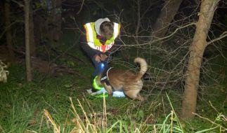 Ein Polizist mit einem Spürhund sucht nach einem vermissten Mann. (Foto)