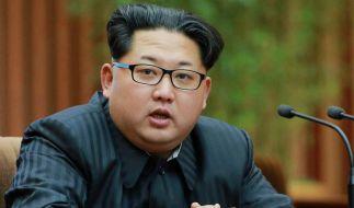 Was steckt wirklich hinter Kim Jong-uns angeblicher Kriegsvorbereitung? (Foto)
