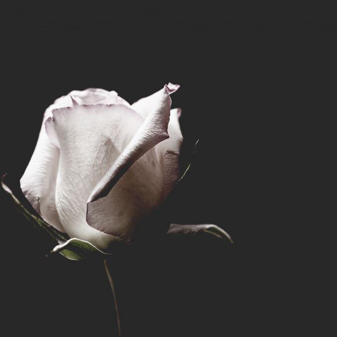 Soulsänger stirbt mit 72 Jahren! TV-Stars trauern um ihren Vater (Foto)