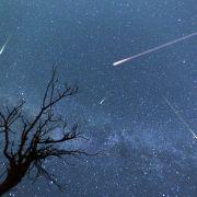 Sternschnuppen-Zauber kurz vor Weihnachten (Foto)