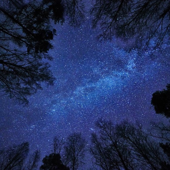 So sehen Sie Sternschnuppenregen und Sonnenfinsternis (Foto)