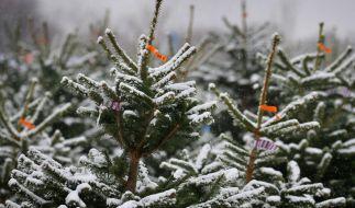 Wie stehen die Chancen auf weiße Weihnachten 2020? (Foto)