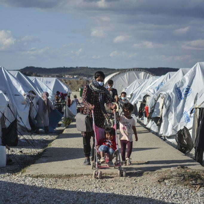 Babys von Ratten angefressen! Katastrophale Zustände in Europa (Foto)
