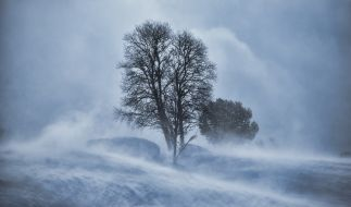 Bereits jetzt kündigt sich Unwetter an Weihnachten an. (Foto)