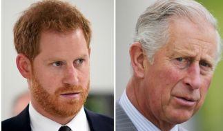 Prinz Harry und Prinz Charles werden Weihnachten nicht gemeinsam feiern. (Foto)