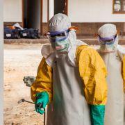 """""""Apokalyptische Ausmaße""""! Forscher warnt vor tödlicher Virus-Seuche (Foto)"""