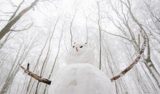 Gleich zwei Schneetiefs schneien Deutschland ein. (Foto)