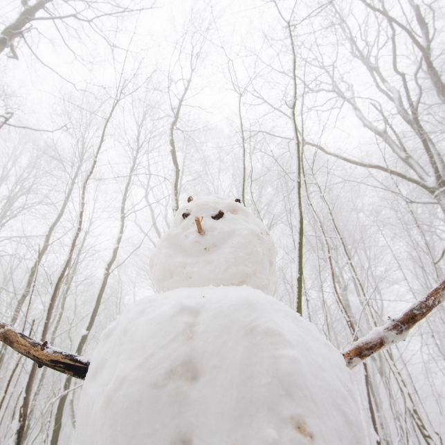 15 Zentimeter Neuschnee! TiefAhmet schneit Deutschland ein (Foto)