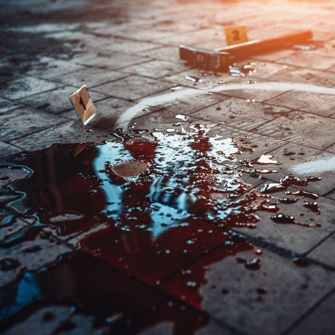 Frau (42) getötet und an Schweine verfüttert (Foto)