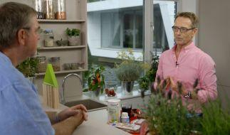 Mit gesunder Ernährung heilen: Dr. Matthias Riedl hilft Patienten auch im TV. (Foto)
