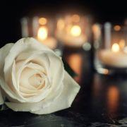 """Große Trauer! """"Denver Clan""""-Star mit 93 Jahren gestorben (Foto)"""