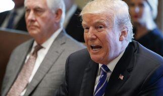 US-Präsident Donald Trump und Ex-Außenminister Rex Tillerson werden wohl keine Freunde mehr. (Foto)
