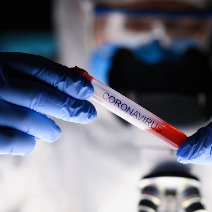 Suche nach Patient 0: Wissenschaftlerin aus geheimen Wuhan-Labor vermisst (Foto)