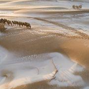 Läutet DIESER Wüstenschnee das Ende der Welt ein? (Foto)