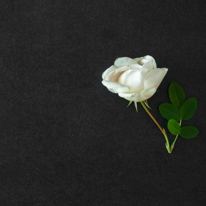 War es Selbstmord? TOWIE-Star leblos aufgefunden (Foto)