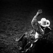 Horror-Unfall bei Wettkampf! Stier tötet Rodeo-Legende (Foto)