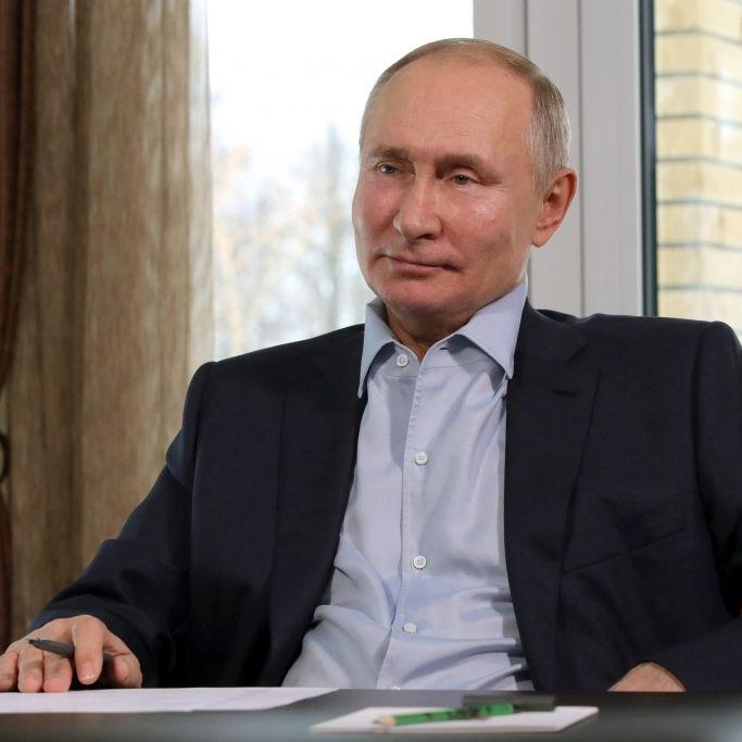 Tierischer Vorwurf! Kreml-Boss hat Delfin Fungie auf dem Gewissen (Foto)