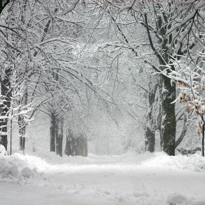Seltenes Wetterphänomen gefilmt! Schneeteufel fegt durch Skigebiet (Foto)