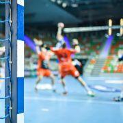 Dänemark erneut Handball-Weltmeister - Final-Sieg gegen Schweden (Foto)