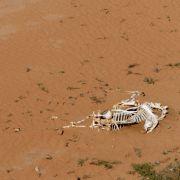 Frau (26) getötet und verbrannt! Brüder verscharren Schwester in Wüste (Foto)