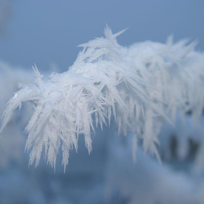 "Polarwirbel-Split im Februar! Meteorologen prophezeien ""Eiszeit"" (Foto)"