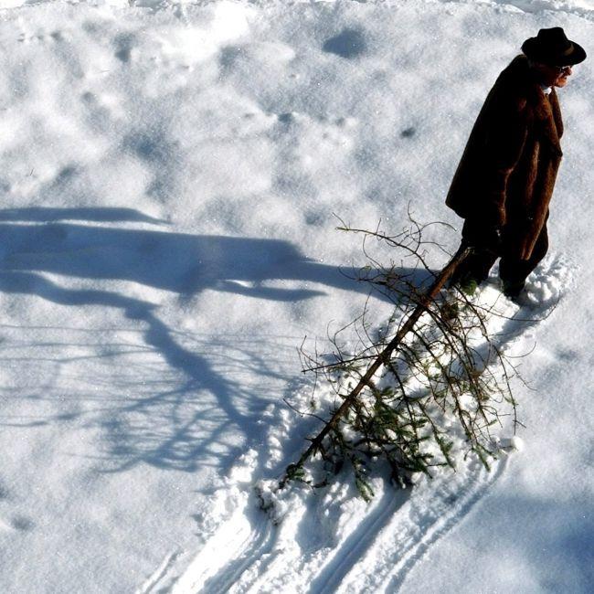 Was hat Festtag am 2. Februar mit Bauernregeln und Murmeltieren zu tun? (Foto)