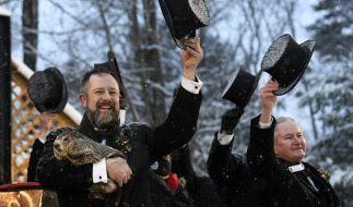Groundhog Club Handler A.J. Dereume hält Punxsutawney Phil, das Wetter prognostizierende Murmeltier, bei der 135. Feier des Groundhog Day auf Gobbler's Knob in Punxsutawney. (Foto)