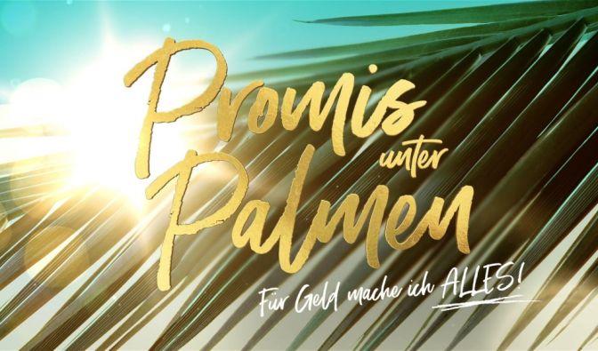 """""""Promis unter Palmen""""-Kandidaten 2021"""