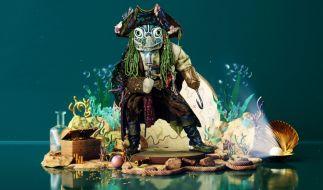 Welcher Promi versteckt sich unter dem Schildkröten-Kostüm? (Foto)