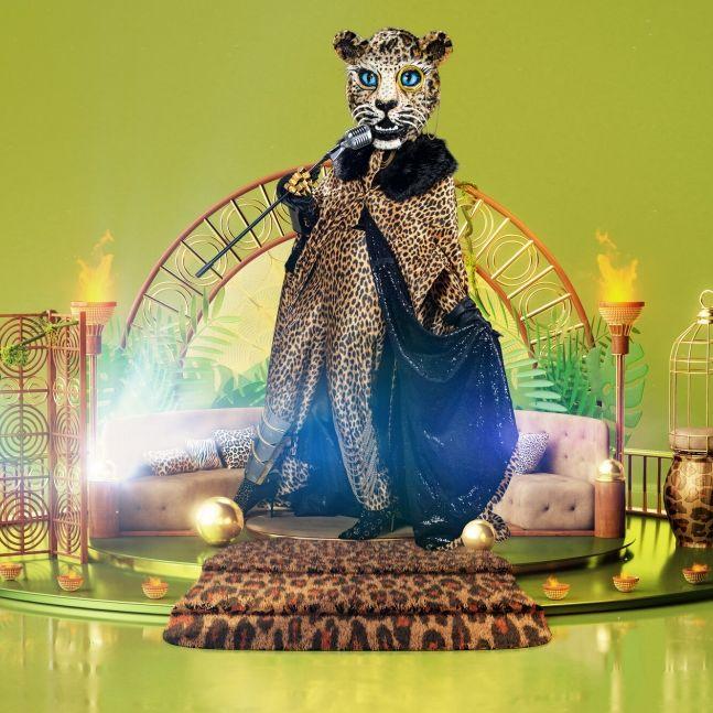 Raubtier mit Megastimme! Welcher Promi ist der Leopard? (Foto)