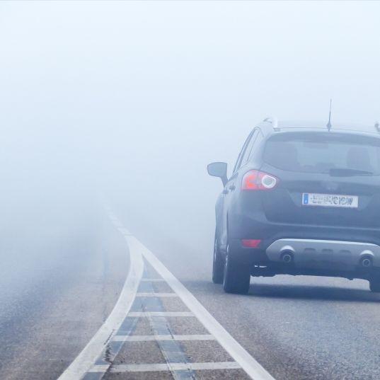 Achtung, Nebel! Die aktuelle Lage am Samstag (Foto)