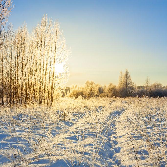 Wetter-Wechsel ab Montag! HIER schlägt die Polarluft nochmal zu (Foto)