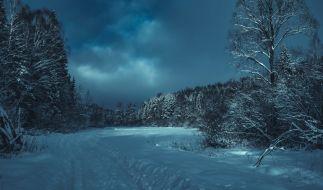 In Russland sind drei kleine Kinder von ihrer Mutter bei klirrender Kälte im Wald ausgesetzt worden (Symbolbild). (Foto)
