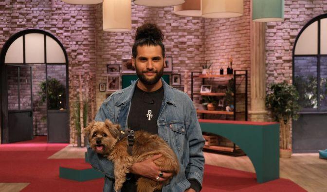 """""""Wir lieben Tiere - Die Haustiershow"""" im Live-Stream und TV"""