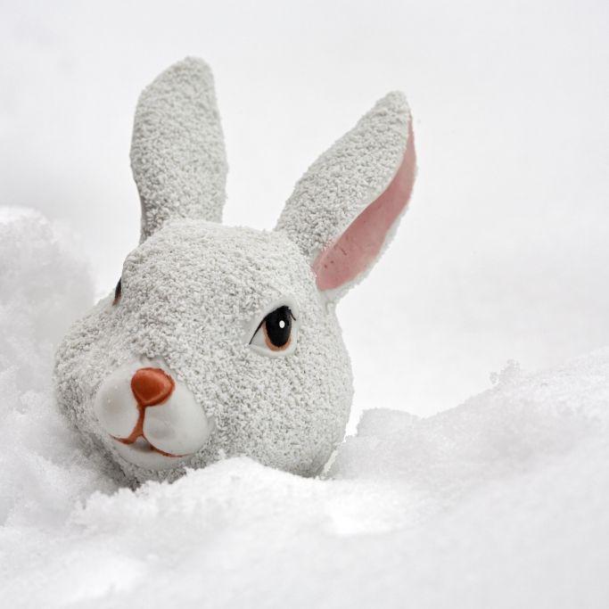 Weißes Osterfest? Später Wintereinbruch durch Polarwirbel möglich (Foto)