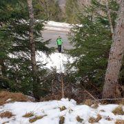 Rodlerin (18) rast gegen Baumstumpf - tot! (Foto)