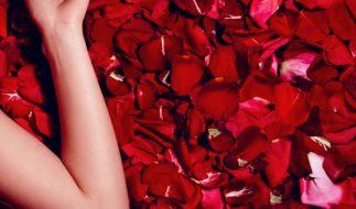 Demi Rose lässt ihre Fans schwitzen. (Foto)