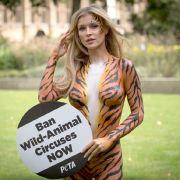 Wilde Verrenkungen! Polnisches Model halbnackt beim Yoga (Foto)