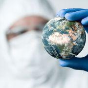 Suche nach Tier X! Forscher warnen vor neuer Virus-Seuche (Foto)