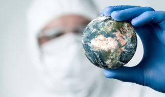 """Forscher suchen jetzt nach dem """"Tier X"""", das ein tödliches Virus in sich trägt. (Symbolfoto) (Foto)"""