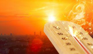 Wie heiß wird der Sommer 2021? (Foto)