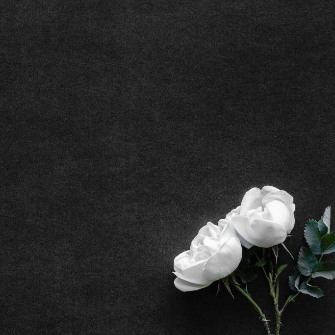 Selbstmord-Drama! Influencer nimmt sich wegen Geldsorgen das Leben (Foto)