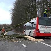 """So heftig wütete Sturmtief """"Klaus"""" in Deutschland (Foto)"""