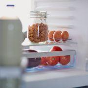 Vorsicht, Schimmel! DIESEN Kühlschrank-Fehler macht fast jeder (Foto)