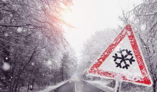 In Deutschland soll es an den kommenden Tagen winterlich werden. (Foto)