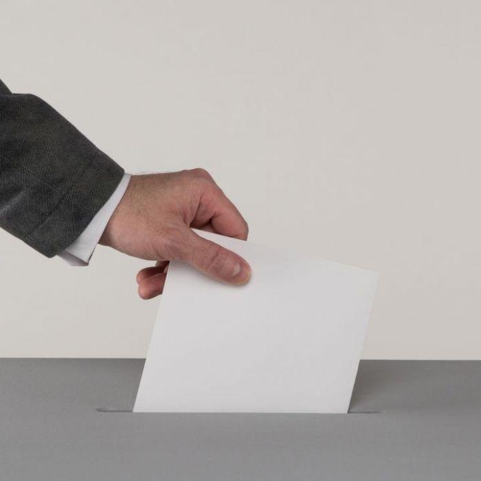 Wiederholung der Wahlen im TV und online (Foto)
