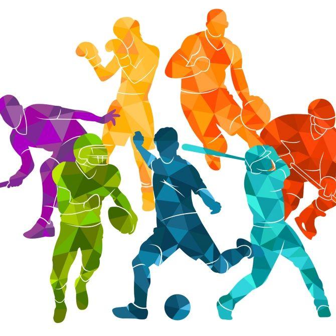 Mannschaftssport und Radsport (Foto)