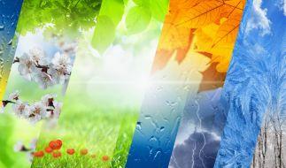 Wie wird das Wetter im Jahr 2021? (Foto)